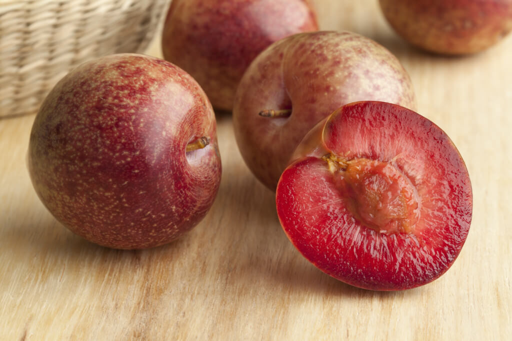 Pluot Trees image