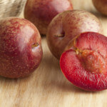 pluot-trees-image