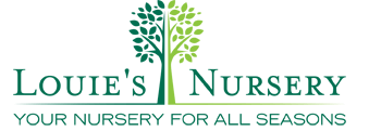 Louie's Nursery Logo